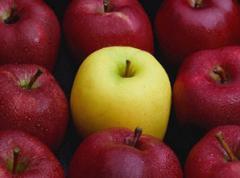 Apple purée
