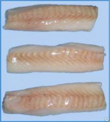 Fish fillet, Makrurus of B/Sh CM fille