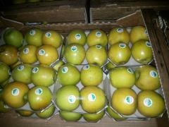 Яблоки сорт Голден, яблоки Голден купить, яблоки