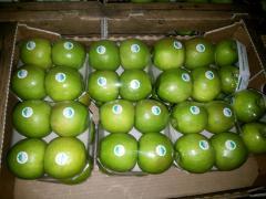 Яблоки зимние сорт Гренни, яблоки зимние, яблоки