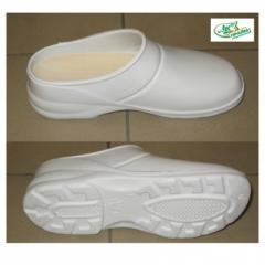 Semi-galoshes are intended for various branches of