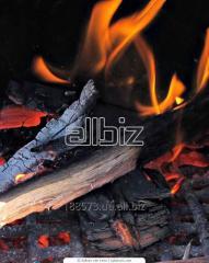 Charcoal from myagkolistvenny breeds of wood /