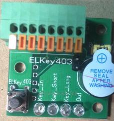 Controller of electronic keys DS1990