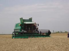 He combine for cleaning of grain crops of KZS-9-1