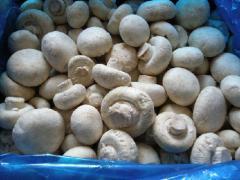 The mushrooms frozen