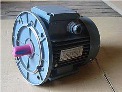 Electric motors are common industrial