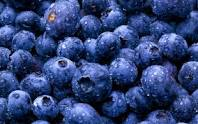 Bilberry extrac