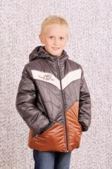 Jacket demi-season for the boy (brown)