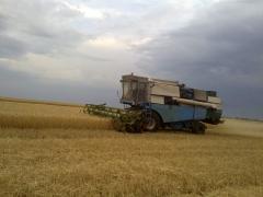 комбайн зерноуборочный Fortshritt 516