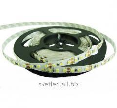 Светодиодная лента 2835-120-IP33-CWb-8-12