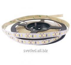 Светодиодная лента 2835-120-IP33-NW-10-12