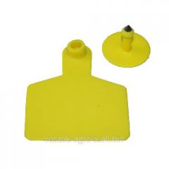 Clip-on earrings of 50х48 mm