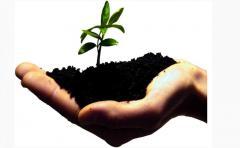 Микроудобрения, многоцелевой универсальный комплекс биологически-активной защиты агрокультур и почвы, в т.ч., для ведения органического земледелия - ТОРФОВИТ.