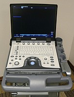 Portable ultrasonography the GE Vivid E soft BT-08