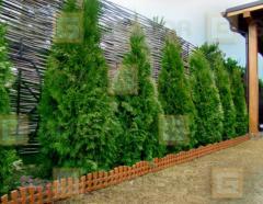 Декоративне огородження для клумб Геодор