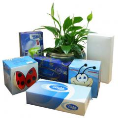 Cosmetic wipes for the person Tischa Papier (Tisha