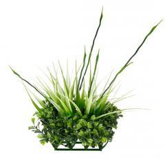 Пластиковое растение Fluval Chi BOXWOOD
