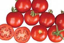 Nas_nya to Shast's tomato of F1
