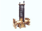 The valve regulating