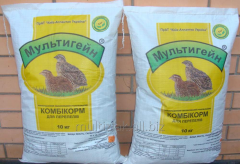 Compound feed for quails
