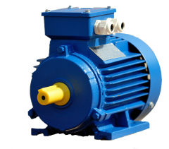 Common industrial electric motor