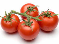 Tomato hothouse branch of TM of Sinkov wholesale