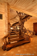 Carved to buy ladders from a tree in Ukraine