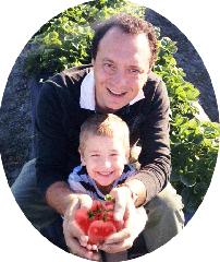 Ground organic tomatoes