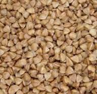 Buckwheat seeds. Seed grain for field husbandry