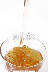 Buckwheat honey, honey buckwhea