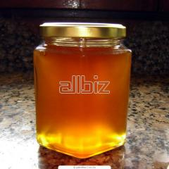 Honey acacia, honey from acacia, Acacia honey
