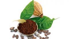 Cocoa alkalizirovanny, alkalizirovanny to buy