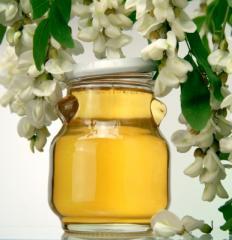 Honey acacia, May honey, honey from white acacia