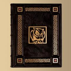 The book in leather cover of handwork