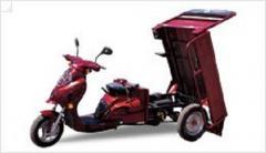 Грузовой мотоцикл FT 100 ZY, Вантажопод'ємність -