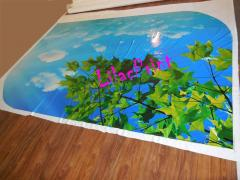 Stretch ceilings glossy photo printing