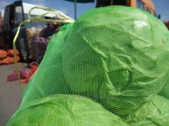 Grid vegetable 50х80