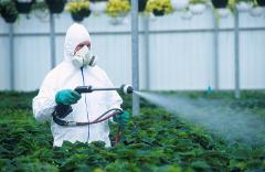 Fungicides in assortmen