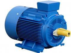 Electric motor common industrial ACORUS 225M6