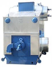 Boiler of low pressure E-1,0-0,9G-Z(E)