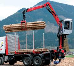 Loaders are loading forest, loading forest to buy
