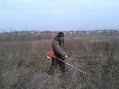 Услуги триммеров, покос травы, бурьяна, камыша