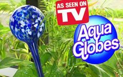 AQUA GLOBES AKVA-GLOBUS FOR FLOWERS
