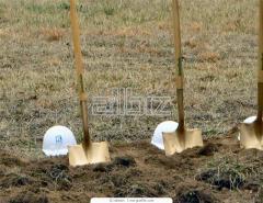Черенки для лопат