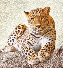 "Photowall-paper ""Leopard"