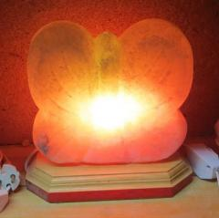 Salt Butterfly lamp