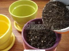 The soil for plants to buy a biohumus in Kiev