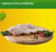 Голень цыплят-бройлеров ТМ Гавриловские курчата.
