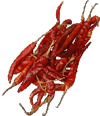 Siliculose paprika whole (Chile). Spicery in