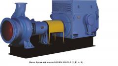 BM-Pumpen